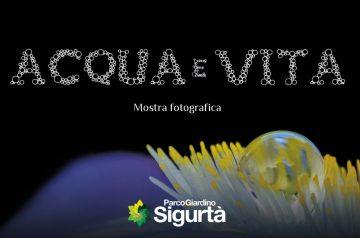 Mostra Fotografica: Acqua e Vita