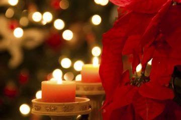 Gusti... Amo Cerea il Natale