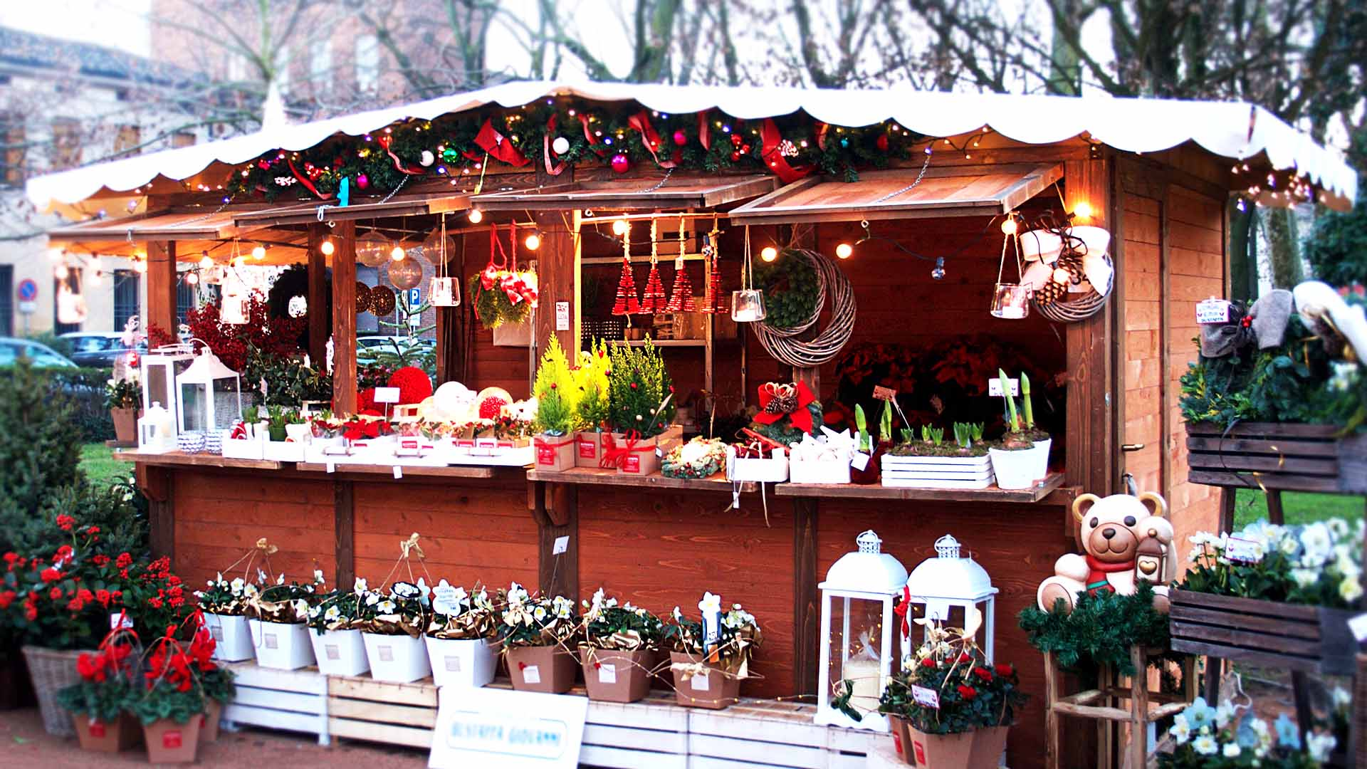 Thun Winter Village a Mantova | Carnet Verona : Carnet Verona