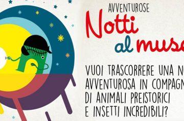 Avventurose Notti al Museo 2017