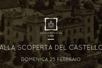 Alla Scoperta del Castello