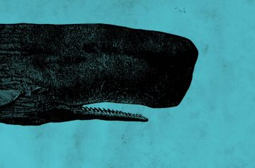 Moby Dick - Educational al teatro Ristori