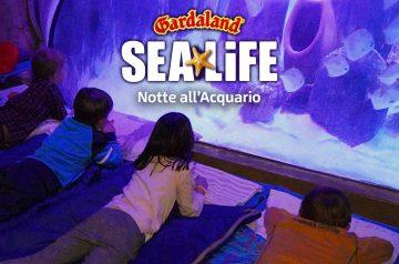 Notte a Gardaland SEA LIFE