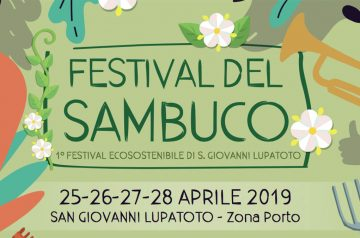 Festival del Sambuco - Ecofestival di San Giovanni Lupatoto