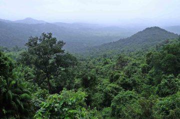 Foreste SottoSopra - Campagna UIZA al Parco Natura Viva