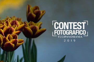 Contest fotografico Tulipanomania 2019 al Sigurtà