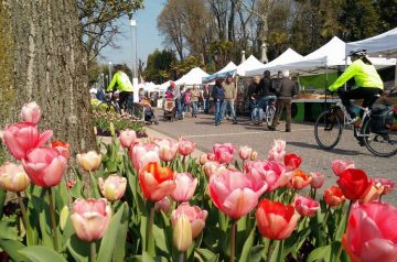 ANNULLATO - Pasqua a Bardolino 2020