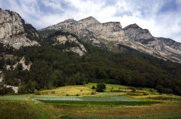Bio Cammina Grestana nella Val di Gresta